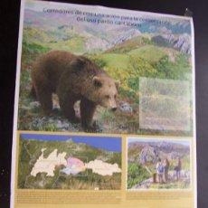 Carteles de Turismo: CORREDORES DE COMUNICACIÓN OSO PARDO CANTÁBRICO (CARTEL 56*38 CM). Lote 100872167