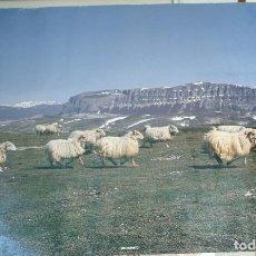 Carteles de Turismo: POSTER TURISTICO DE NAVARRA. Lote 197227395