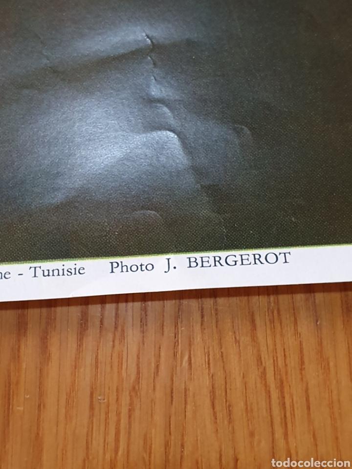 Carteles de Turismo: Tunisian south, photo j.bergerot, 97 cm x 65 cm. Años 70. - Foto 7 - 200025280