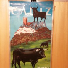 Carteles de Turismo: PROVINCIA DE CÁDIZ. PUEBLOS BLANCOS. CARTEL PUBLICITARIO. MEDIDAS 67,5 X 34. Lote 217502983