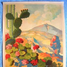 Affiches de Tourisme: CARTEL POSTER RETRO TURISMO - TENERIFE, EVERLASTING SPRING - ETERNA PRIMAVERA. CANARIAS, ESPAÑA.. Lote 255329850