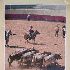 Carteles de Turismo: ENCIERRO DE TOROS EN CHAMUSCA (PORTUGAL) CON CABALLISTAS EN TRAJE TRADICIONAL. CARTEL GRAN TAMAÑO.. Lote 275211138