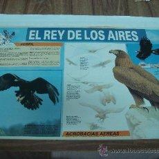 Carteles: POSTERS DE LA REVISTA QUEST.-EL REY DE LOS AIRES,EL AGUILA REAL,ACROBACIAS AEREAS.-TAMAÑO:40X57CTMS.. Lote 29963977