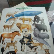 Carteles: CARTEL POSTER ANIMALES EN PELIGRO DE EXTINCIÓN NATURA. AÑOS 80. Lote 47018645