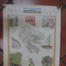 Affissi: GALICIA - PARQUE NATURAL MONTE ALOIA TUY - CARTEL FLORA FAUNA Y TOPONIMIA. 48X68CM. Lote 70039873