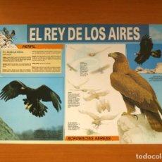 Carteles: EL REY DE LOS AIRES - EL ÁGUILA REAL - QUEST - PÓSTER TAMAÑO 58X41. Lote 82470940