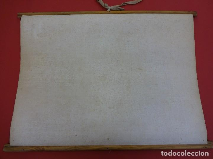Carteles: Vegetales. EL PAN. Cartel o lámina entelada de ESCUELA. 48 x 38 ctms. Muy decorativa. Años 1900s. - Foto 6 - 87147008