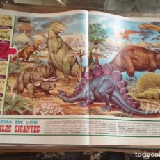 Carteles: 45 X 29 CM GRAN LAMINA EDUCATIVA - CARTEL / POSTER AÑOS 80 - ANIMALES - NATURALEZA - DINOSAURIOS . Lote 89544780