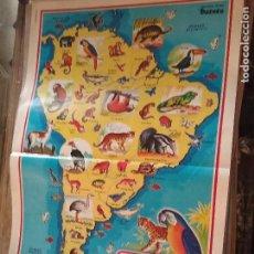 Carteles: 45 X 29 CM GRAN LAMINA EDUCATIVA - CARTEL / POSTER AÑOS 80 - ANIMALES - NATURALEZA - FAUNA AMERICA. Lote 89545056