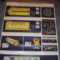Carteles: CARTEL LAMINA ESCOLAR MEDIDAS RADIACION RADIOACTIVA, DR TE NEVES AND COMPANY 1962 - TELA TIPO LIENZO. Lote 91701785