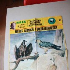Affissi: FÉLIX RODRÍGUEZ DE LA FUENTE, ANIMALES IBÉRICOS EN PELIGRO, ADENA, NÚMERO 9. Lote 96397111