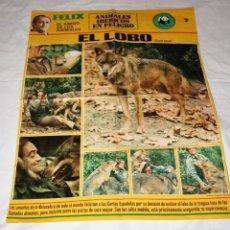 Carteles: FELIX RODRIGUEZ DE LA FUENTE.POSTER EL LOBO.ADENA.Nº 7.AMIGO FELIX.LOBO IBERICO.ANIMALES IBERICOS.. Lote 98400423