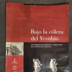 Carteles: CARTEL. BAJO LA COLERA DEL VESUBIO. EXPOSICIÓN VALENCIA (A.2004). Lote 111719774