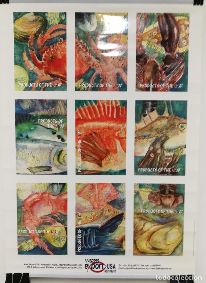 POSTER CARTEL PUBLICIDAD PESCA SEAFOOD EXPORT USA PECES MOLUSCOS MEDIDAS 42 CM X 59 CM (Coleccionismo - Carteles Gran Formato - Carteles Varios)