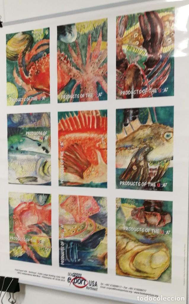 Carteles: POSTER CARTEL PUBLICIDAD PESCA SEAFOOD EXPORT USA PECES MOLUSCOS MEDIDAS 42 CM X 59 CM - Foto 3 - 122730759