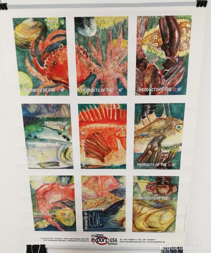 Carteles: POSTER CARTEL PUBLICIDAD PESCA SEAFOOD EXPORT USA PECES MOLUSCOS MEDIDAS 42 CM X 59 CM - Foto 4 - 122730759