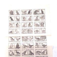 Carteles: AUCA SERIE ANIMALES AVES COLOREADOS, PAPEL DE HILO. MED. 33 X 46 CM. Lote 128775331