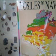 Carteles: FOSILES DE NAVARRA. CARTEL MAPA. Lote 174592069