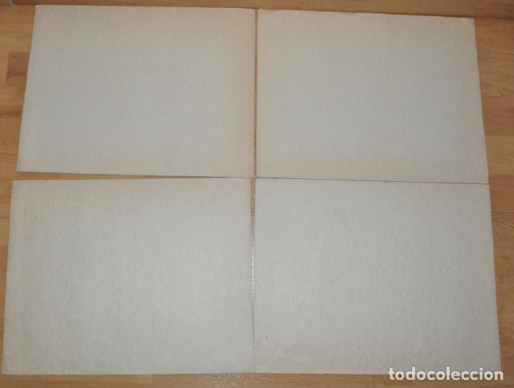 Carteles: Lote 4 carteles escolares .Tematica -Flores.URSS/1960 a - Foto 2 - 147879874