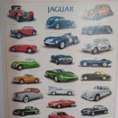 Posters - Póster Jaguar - 159378634