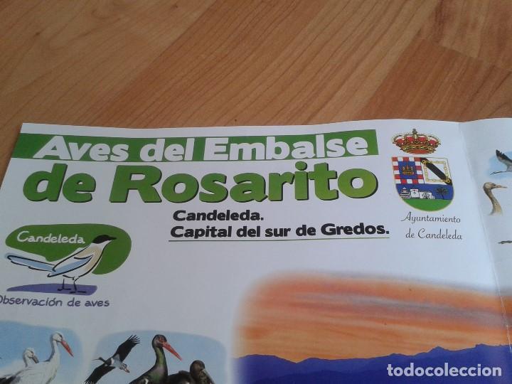 Carteles: Cartel -- Aves del embalse de Rosarito -- Candeleda ( Gredos ) -- Ornitología -- Poster 58 x 42 cm - Foto 2 - 167308172