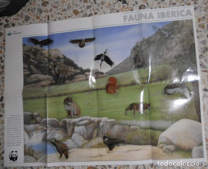 PÓSTER ANTIGUO SERIE ANIMALES DEL MUNDO 12 ADHESIVOS PEGATINAS FAUNA IBÉRICA. ADENA.BANCO SANTANDER (Coleccionismo - Carteles Gran Formato - Carteles Varios)