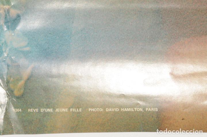 Carteles: POSTER - CARTEL - MUJER DESNUDA - FOTO DAVID HAMILTON (IMPRESO EN ALEMANIA) - Foto 3 - 199099340
