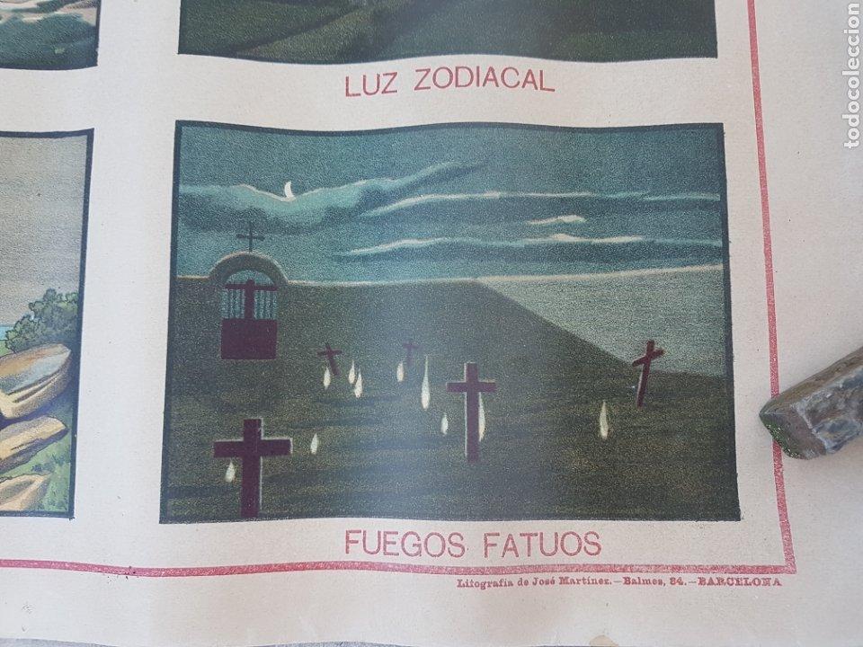 Carteles: Antiguo cartel lamina escolar real academia Ciencias y artes Barcelona - Foto 2 - 207216412