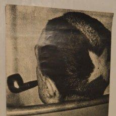 Carteles: MARCEL DUCHAMP - CARTEL 1984 - SALA DE EXPOSICIONES DE LA CAJA DE PENSIONES - MADRID. Lote 273716413