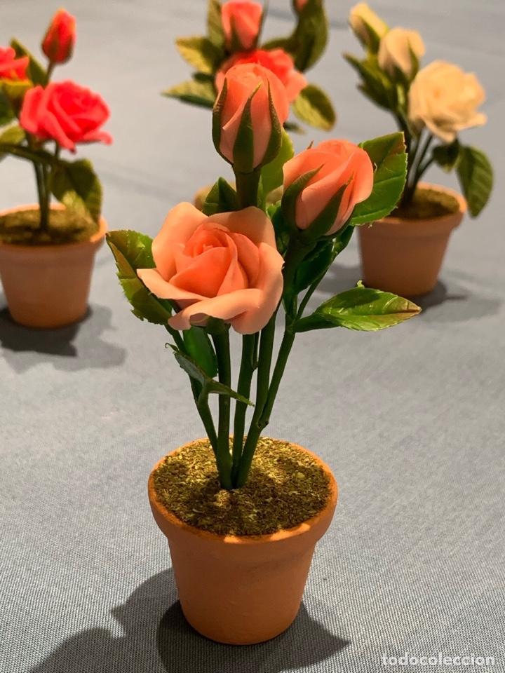 Casas de Muñecas: Hermoso rosal color rosa pálido en miniatura. Flor para jardín de hadas o casa de muñecas. Blythe. - Foto 2 - 233589190
