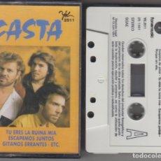 Casetes antiguos: CASTA CASSETTE 1991. Lote 180090745
