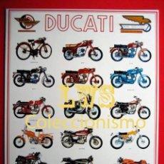 Coches y Motocicletas: DUCATI MODELOS PUBLICIDAD IMAGENES - MOTOCICLISMO MOTOS MOTOR. Lote 107020328
