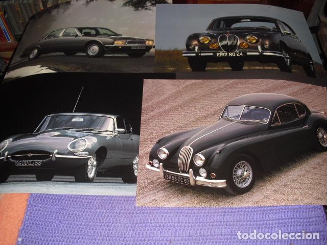 4 CARTELES-FOTOS- JAGUAR. MODELOS CLÁSICOS - 45X31,5 CMS. (Coches y Motocicletas Antiguas y Clásicas - Catálogos, Publicidad y Libros de mecánica)