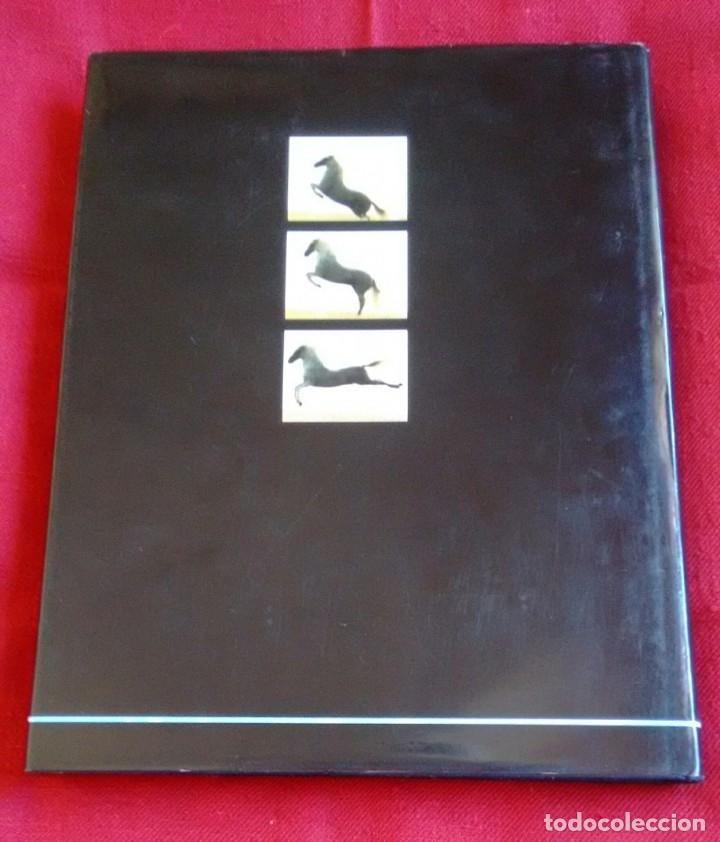 Coches y Motocicletas: Libro Hispano Suiza/Pegaso. Un siglo de camiones y autobuses. Editorial Lunwerg 1995. - Foto 4 - 164433862