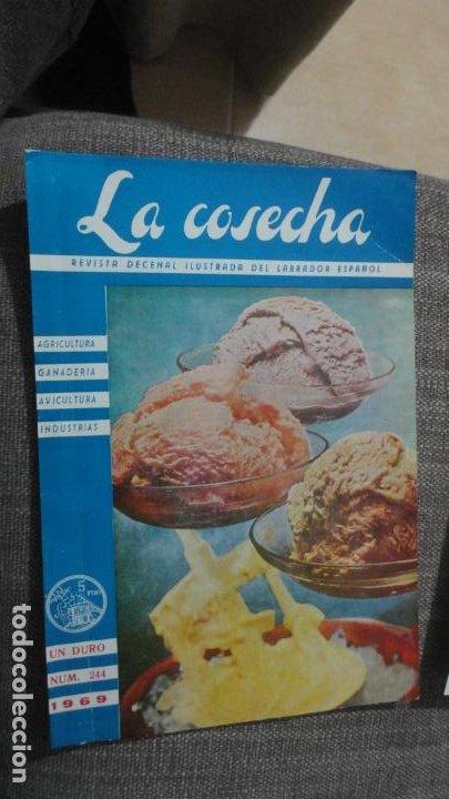 Coches y Motocicletas: ANTIGUA PUBLICIDAD.TRACTOTES EBRO. COMERCIAL AUTO TRACTOR S.A LUIS MONTOTO.SEVILLA 1969. - Foto 3 - 241813055