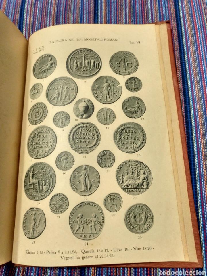 Catálogos y Libros de Monedas: 1916 LA FAUNA E LA FLORA. FRANCESCO GNECCHI. 130 PÁGINAS. RARO LIBRO. - Foto 10 - 140967017