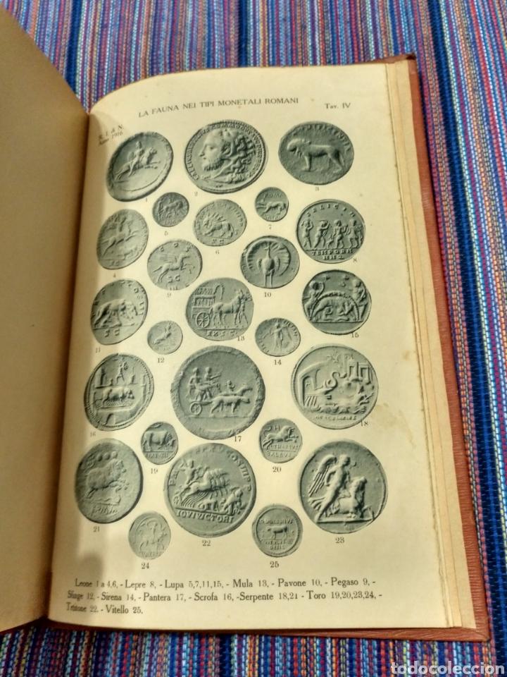 Catálogos y Libros de Monedas: 1916 LA FAUNA E LA FLORA. FRANCESCO GNECCHI. 130 PÁGINAS. RARO LIBRO. - Foto 11 - 140967017