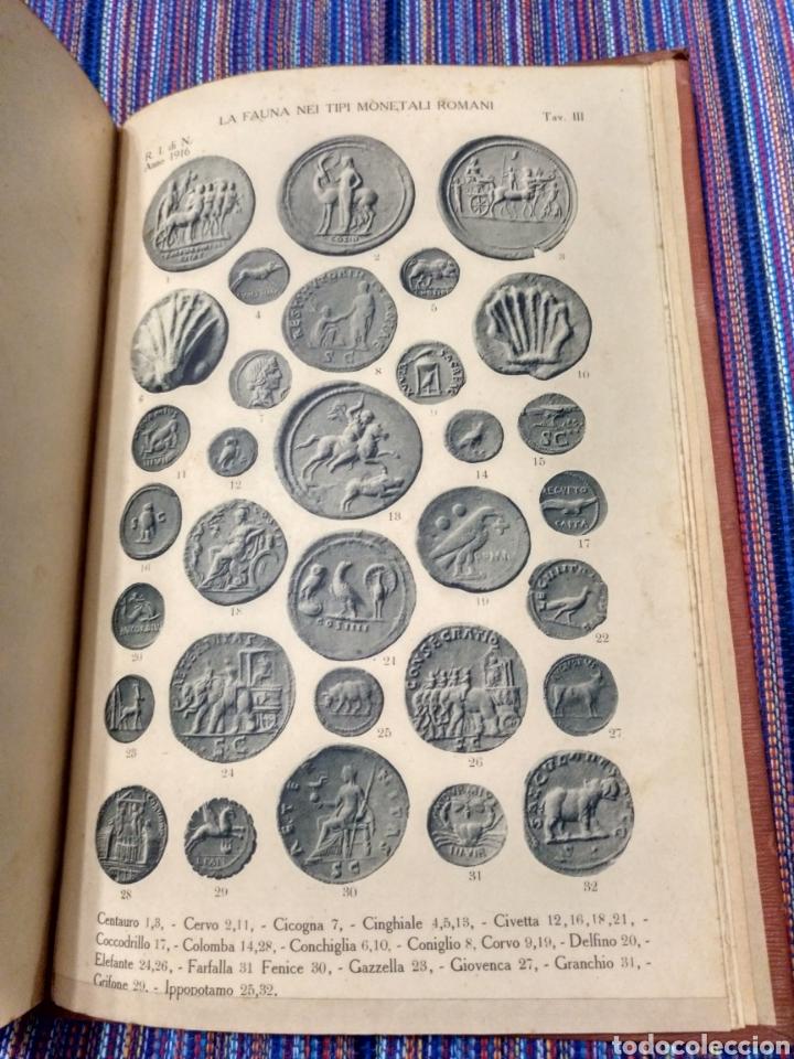 Catálogos y Libros de Monedas: 1916 LA FAUNA E LA FLORA. FRANCESCO GNECCHI. 130 PÁGINAS. RARO LIBRO. - Foto 12 - 140967017