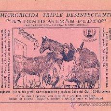 Catálogos publicitarios: MICROBICIDA TRIPLE DESINFECTANTE - ANTONIO MUZAS PUEYO - AÑOS 20 - 16 PÁGINAS - BARCELONA. Lote 17485672