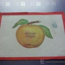Catálogos publicitarios: ANTIGUA PUBLICIDAD FARMACIA SOCIEDAD FARMACEUTICA DE ALZA. GUIPUZCOA. GRAFICAS UREZBEA RENTERIA. Lote 25391289