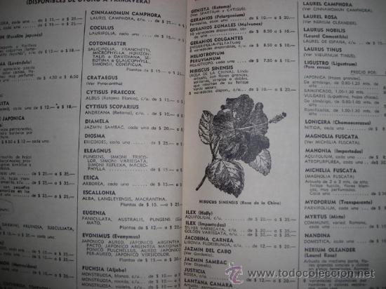 Catálogos publicitarios: CATALOGO DE HORTALIZAS Y FRUTALES, por J.A. DIHARCE Y CIA - Argentina - DECADA DE 1950 - RARO - Foto 3 - 36978525