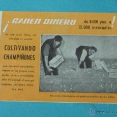Catálogos publicitarios: CATÁLOGO PUBLICITARIO CULTIVOS ARTIFICIALES - CHAMPIÑONES. Lote 39946988