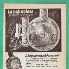 Catálogos publicitarios: HOJA SUELTA PUBLICITARIA - LICOR DEL POLO / ORIVE - FARMACIA / SALUD - AÑO 1955 - SRD. Lote 45771711