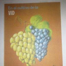 Catálogos publicitarios: SUPERFOSFATO DE CAL - . Lote 50501961