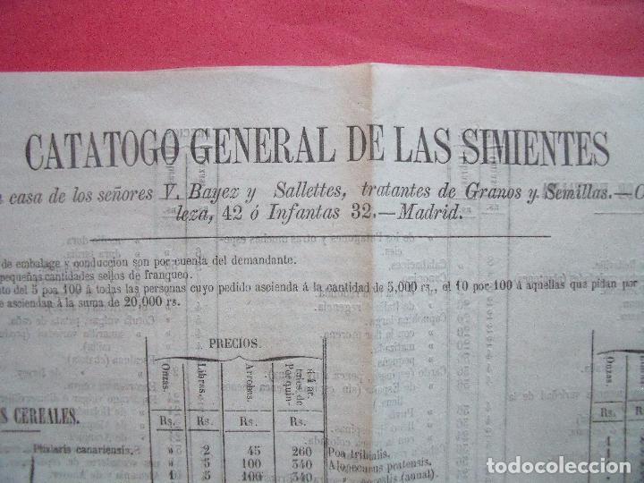 Catálogos publicitarios: B. BAYEZ Y SALLETTES.-TRATANTES DE GRANOS Y SEMILLAS.-CATALOGO.-SIMIENTES.-PLANTAS.-MADRID. - Foto 2 - 102634071