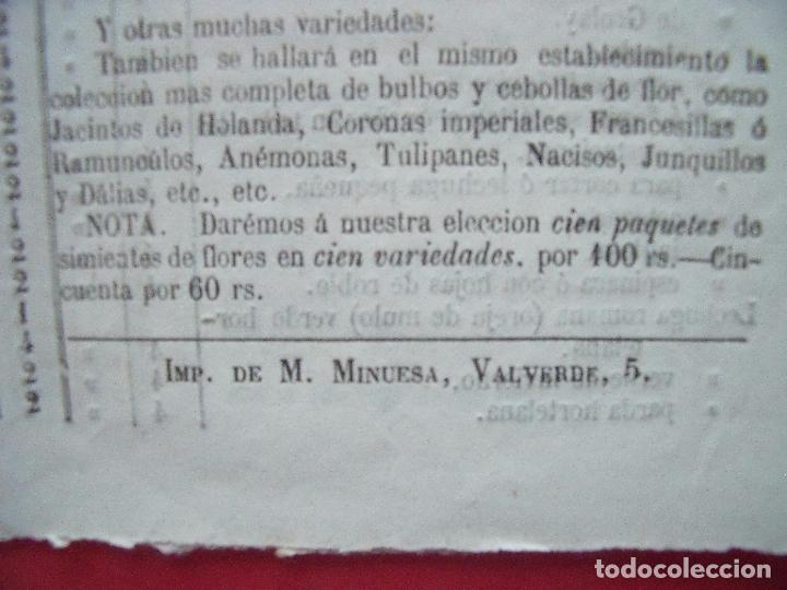 Catálogos publicitarios: B. BAYEZ Y SALLETTES.-TRATANTES DE GRANOS Y SEMILLAS.-CATALOGO.-SIMIENTES.-PLANTAS.-MADRID. - Foto 3 - 102634071