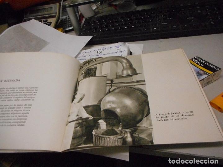 Catálogos publicitarios: catalogo publicitario chartreuse - Foto 4 - 129445175