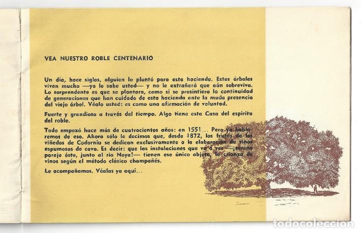 Catálogos publicitarios: CATÁLOGO PUBLICITARIO CODORNIU. CHARLANDO DURANTE LA MARCHA... SAN SADURNÍ DE NOYA. BARCELONA- 1962 - Foto 2 - 168803904