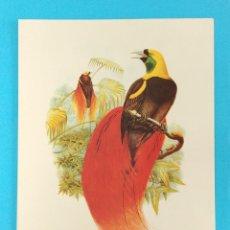 Catálogos publicitarios: LABORATORIO NOVOFARMA S A. LAMINA PUBLICIDAD. Lote 172321542