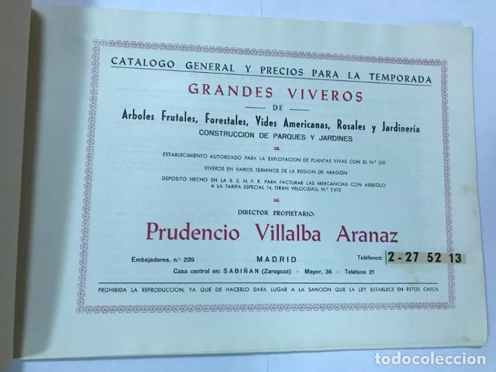 Catálogos publicitarios: CATALOGO GENERAL VIVEROS PRUDENCIO VILLALBA ARANAZ, 1961-62.- MADRID. - Foto 2 - 178058663